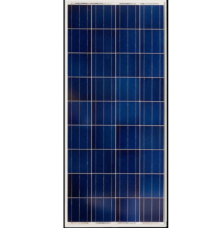 Paneles BlueSolar